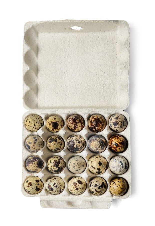 鹌鹑蛋纸盒包裹在白色被隔绝的背景的 r 图库摄影
