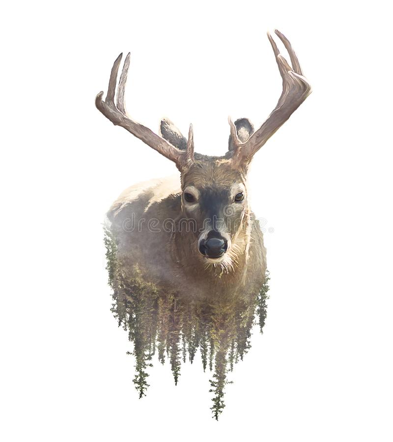 鹿和森林水彩两次曝光作用 免版税图库摄影