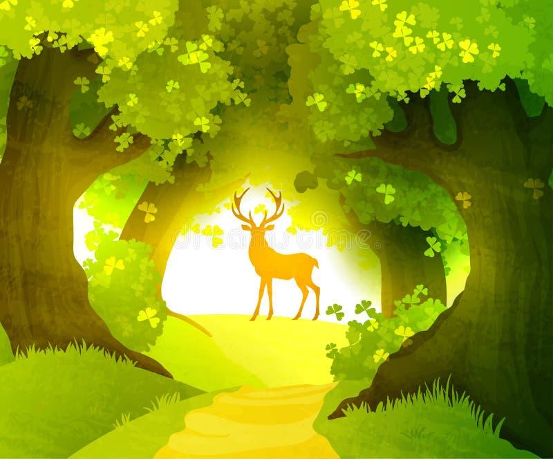 鹿在站立在朝阳前面的森林里 皇族释放例证