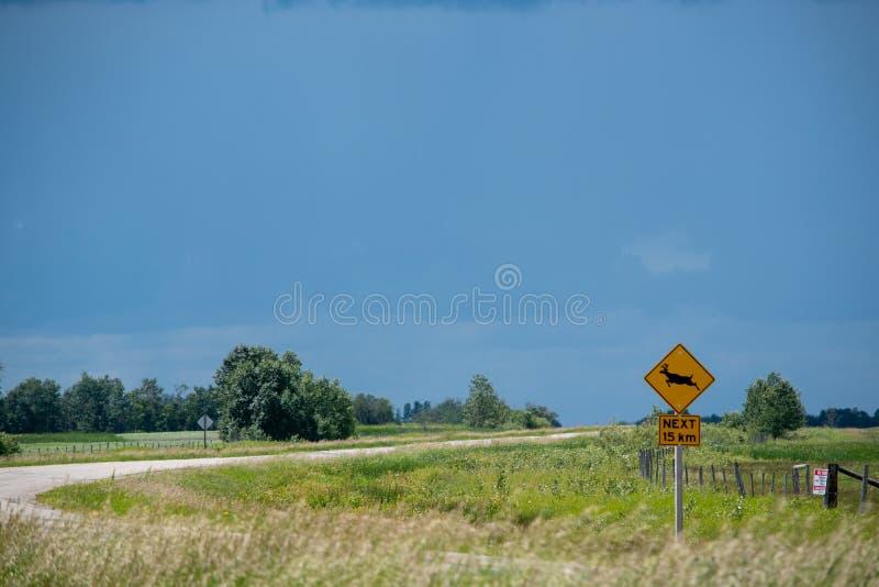 鹿在高速公路15,萨斯喀彻温省,加拿大的横穿标志 免版税库存照片