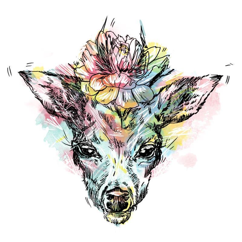 鹿有在白色背景隔绝的鹿角的` s头黑剪影  向量例证
