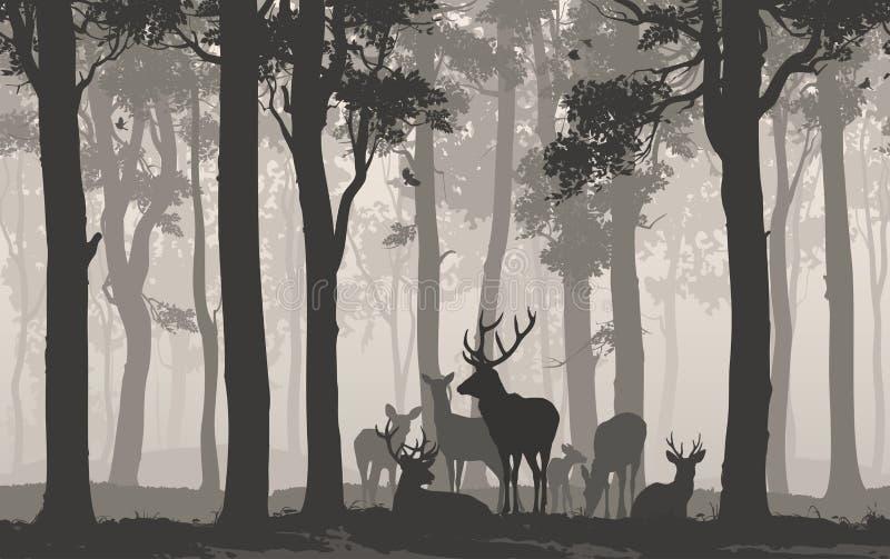 鹿牧群 库存例证
