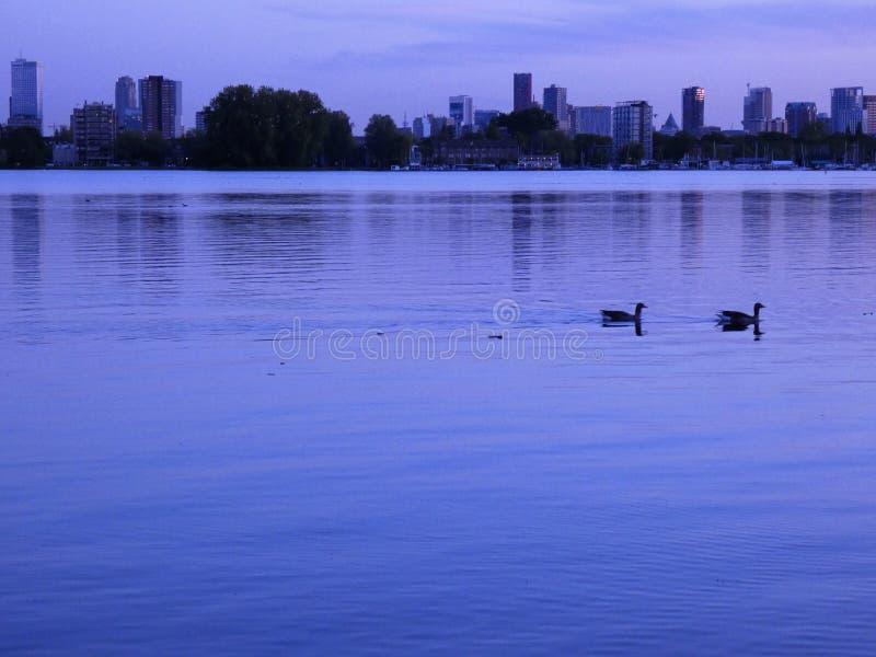 鹿特丹地平线的湖边视图在黄昏II的 图库摄影