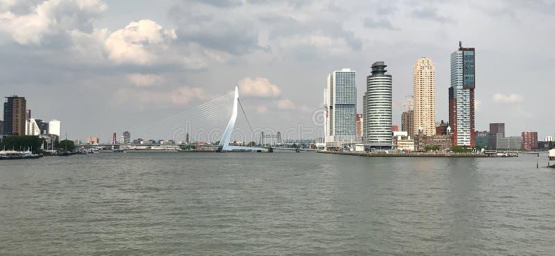 鹿特丹地平线 免版税库存图片
