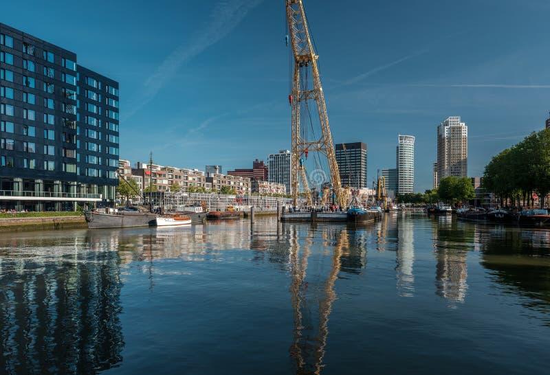 鹿特丹市与水运河的都市风景地平线在前面,南荷兰省,荷兰 库存图片
