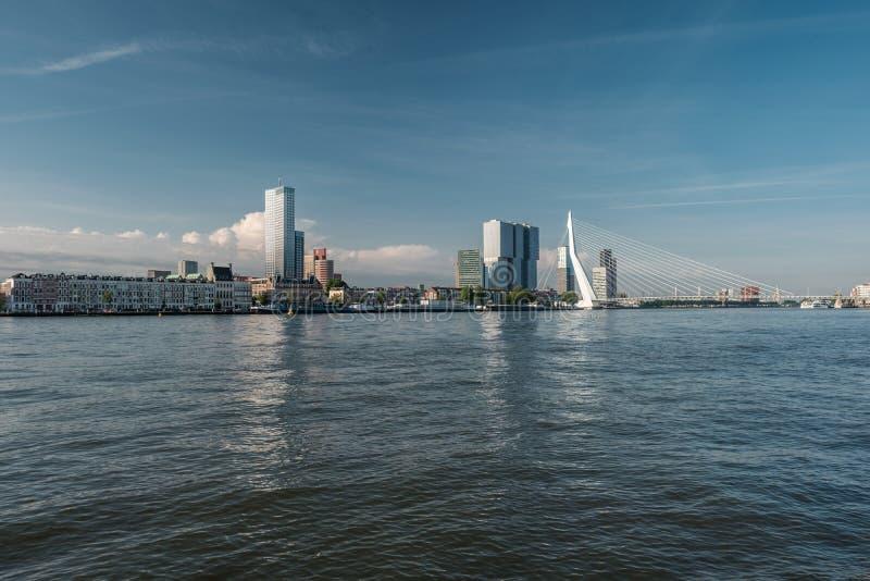 鹿特丹市与Erasmus桥梁和河的都市风景地平线 南荷兰省,荷兰 库存照片
