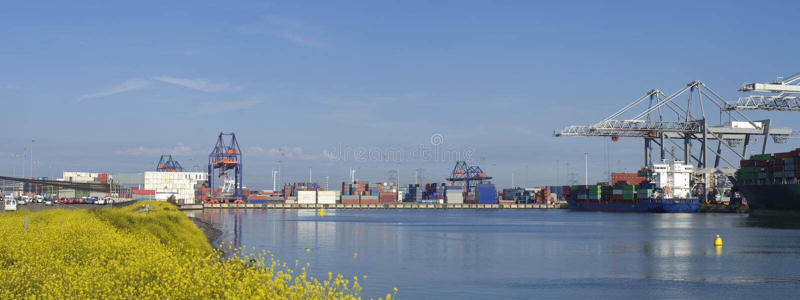 鹿特丹港口 免版税库存图片