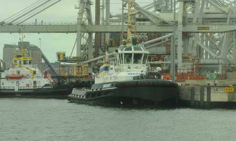 鹿特丹港口 图库摄影