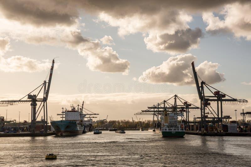 鹿特丹港 库存照片
