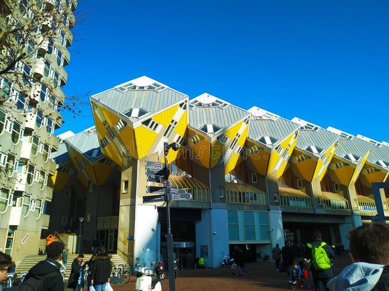 鹿特丹著名正方形的黄色立方体房子在一晴朗的2月天 库存照片