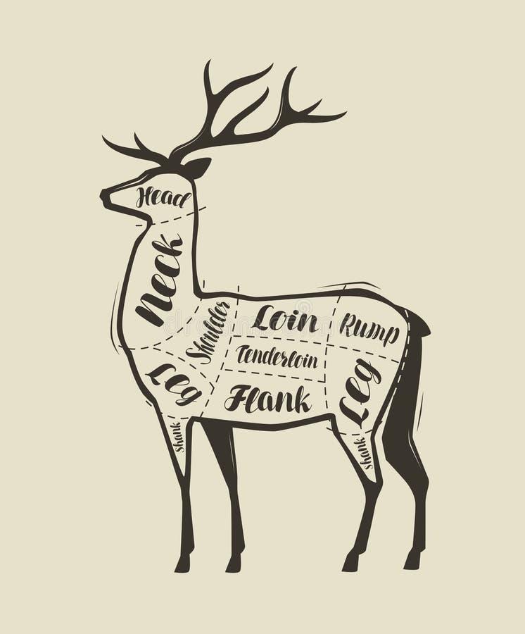 鹿肉切口 餐馆或肉店工作的菜单 传染媒介葡萄酒 皇族释放例证