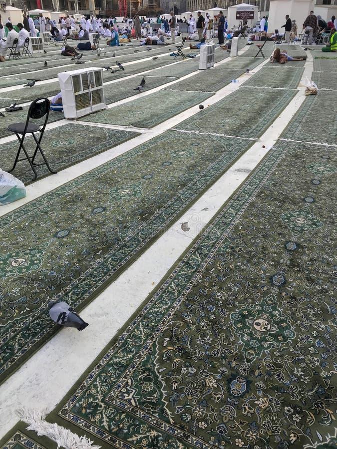 麦加,沙特阿拉伯- 2019年5月29日:绿色地毯放置在哈莱姆清真寺顶楼麦加的,沙特阿拉伯 免版税库存图片