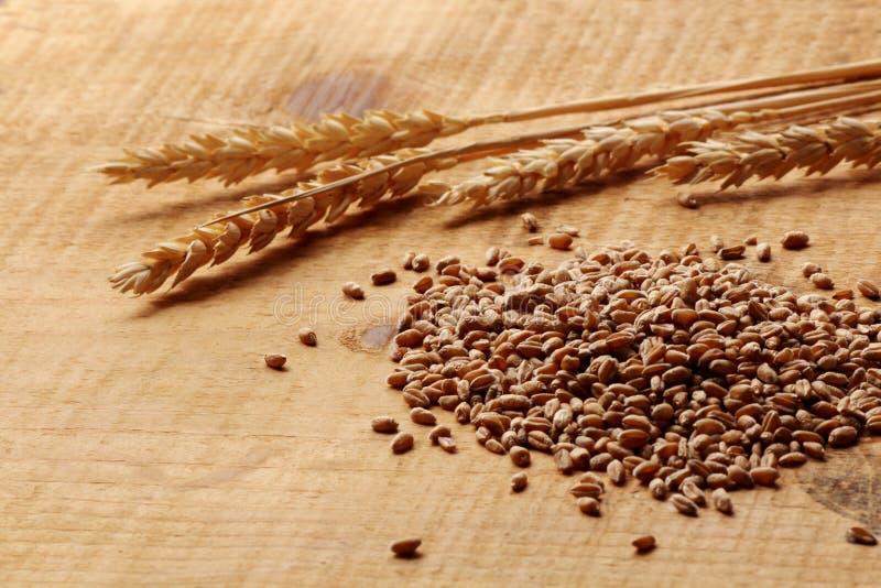 麦子在木板条的玉米和麦子峰值 免版税库存照片
