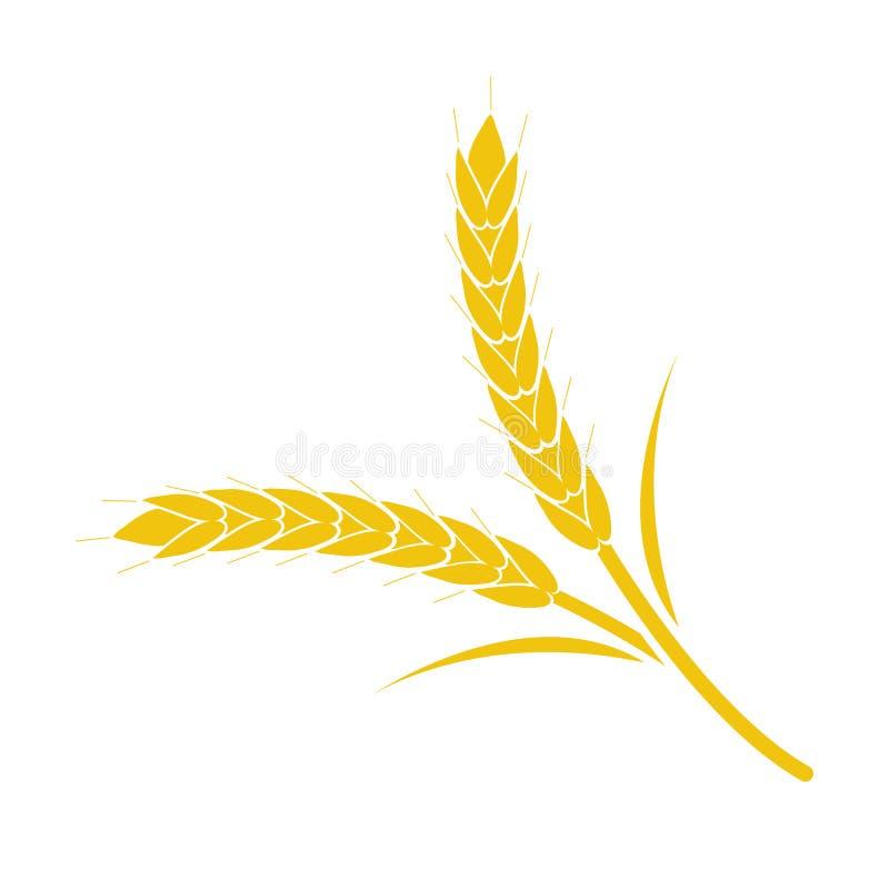 麦子在白色背景的钉黄色 向量例证