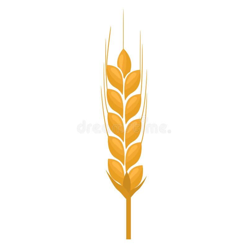 麦子在白色背景隔绝的钉黄色 平的颜色 向量例证