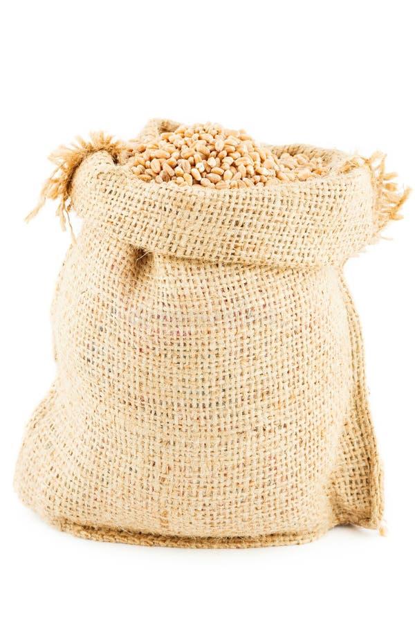 麦子填装的一个亚麻制大袋 库存图片