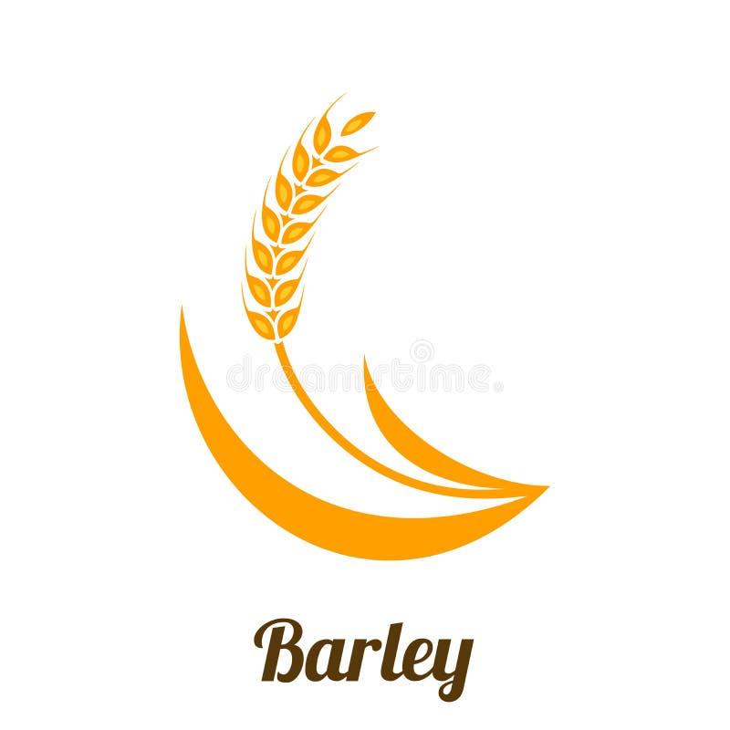 麦子大麦在白色背景隔绝的钉黄色 向量例证