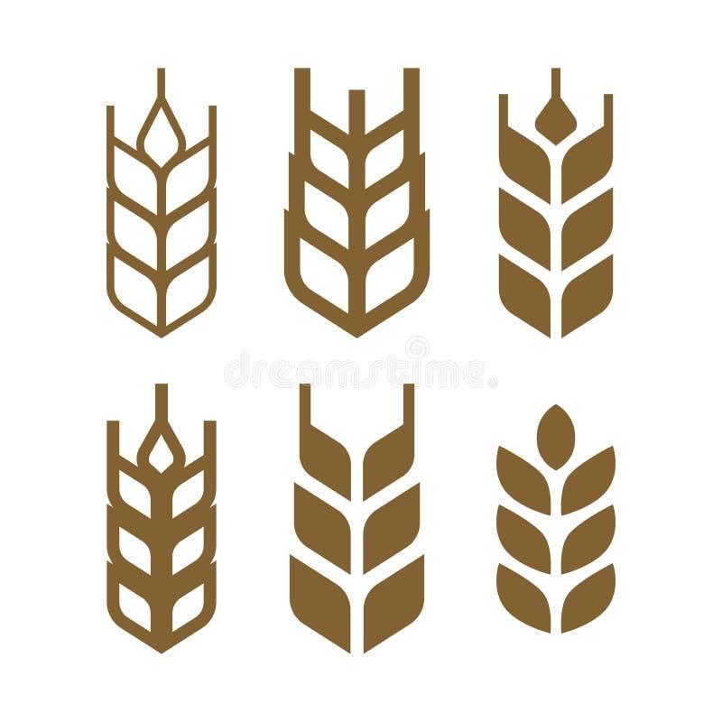 麦子套象,麦子五谷标志,大麦象集合 库存例证