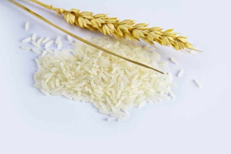 麦子用未煮过的米 免版税库存照片