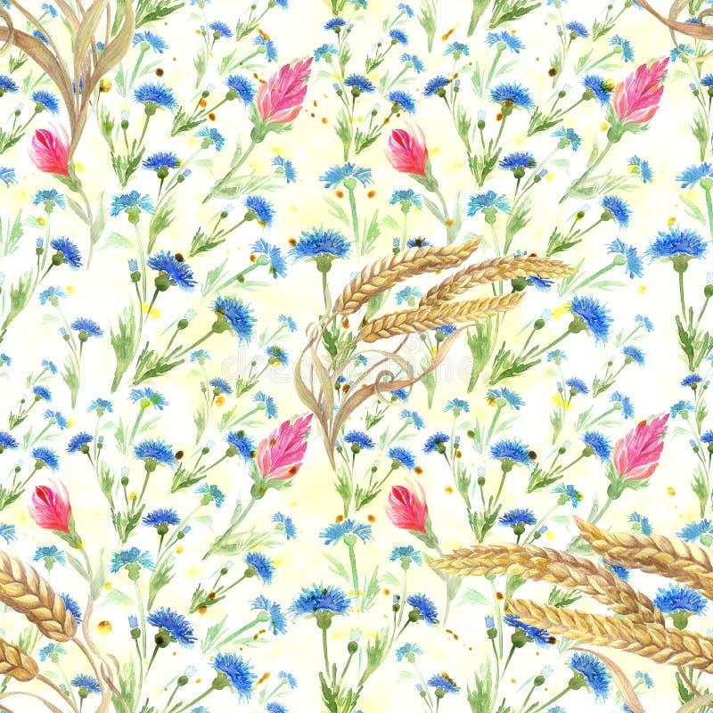 麦子的矢车菊和耳朵 无缝的模式 水彩 墙纸 使用铅印材料,标志,海报,明信片, packagin 库存例证
