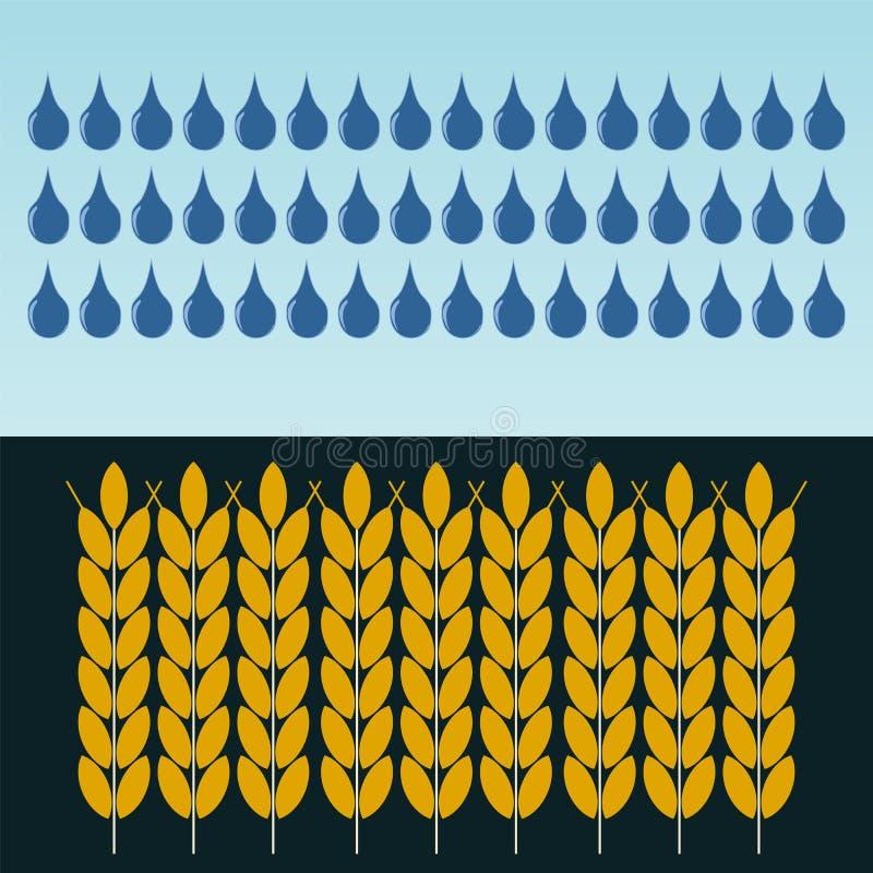 麦子的耳朵在雨中 五谷的耕种 向量例证