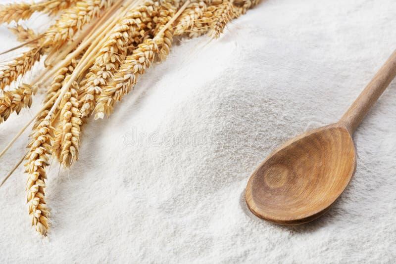 麦子的耳朵在面粉堆的  库存图片
