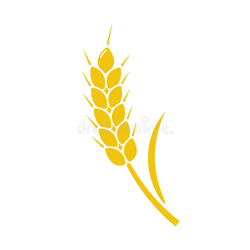麦子被隔绝的钉黄色 库存例证