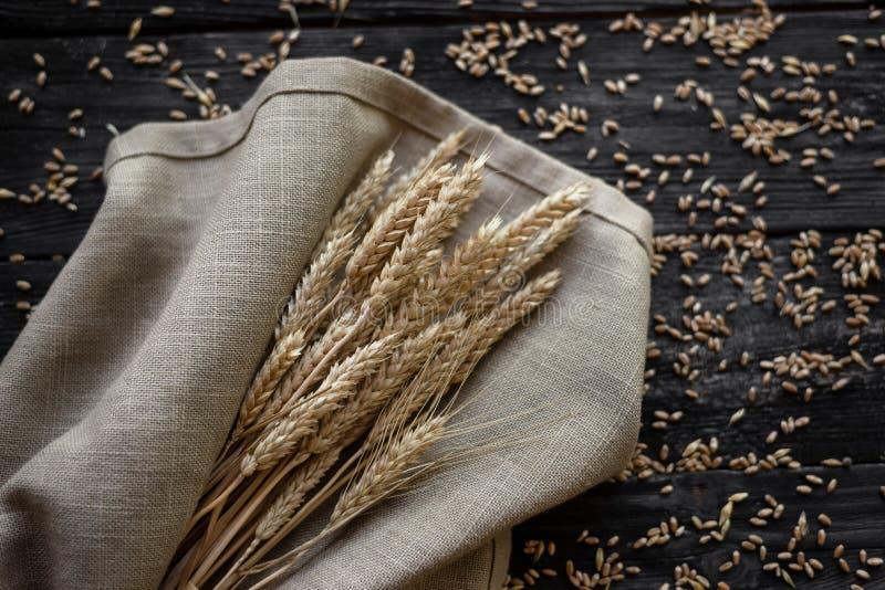 麦子谎言的耳朵在袋子的 新的谷物丰收 免版税库存照片