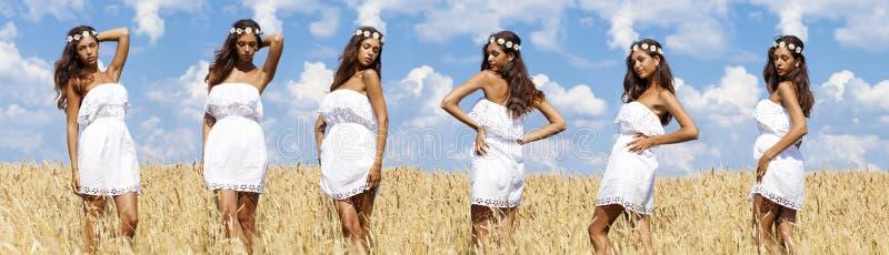 麦子金黄领域的性感的少妇 免版税库存图片