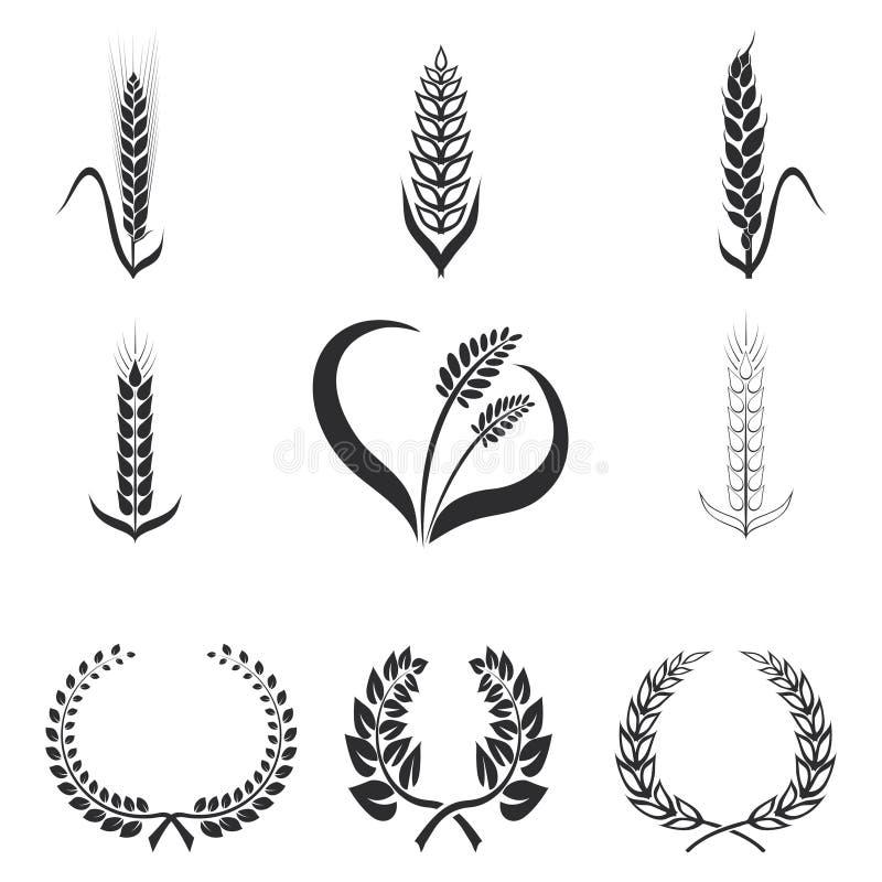麦子,黑麦,玉米传染媒介例证象  皇族释放例证