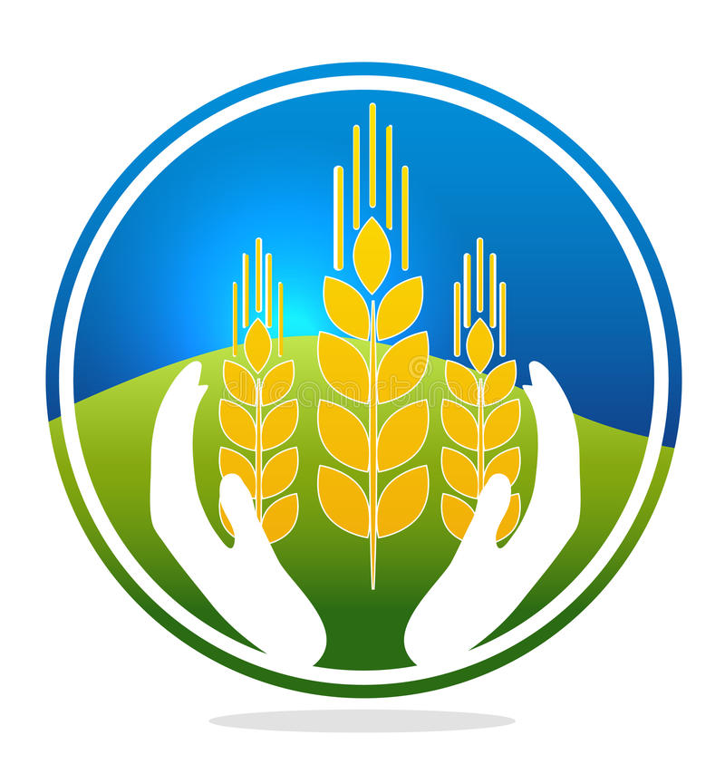 麦子质量标志 向量例证