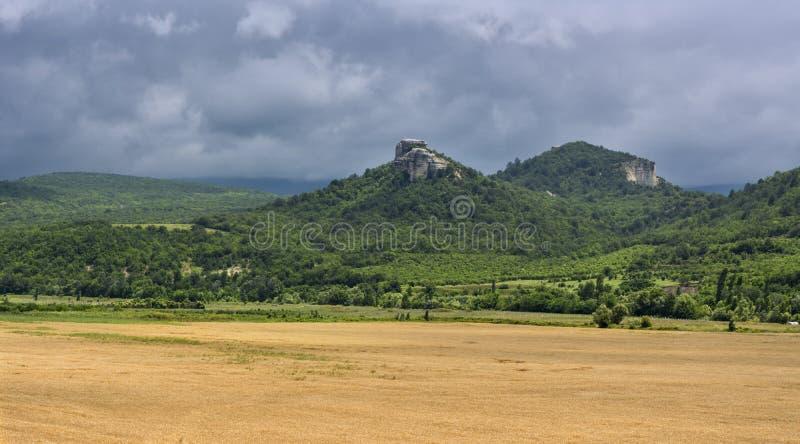 麦田与多山背景的 免版税图库摄影