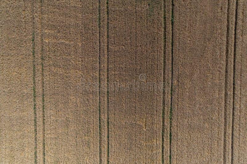 麦田和轨道夏天农业风景鸟瞰图从拖拉机农业纹理或背景  免版税图库摄影
