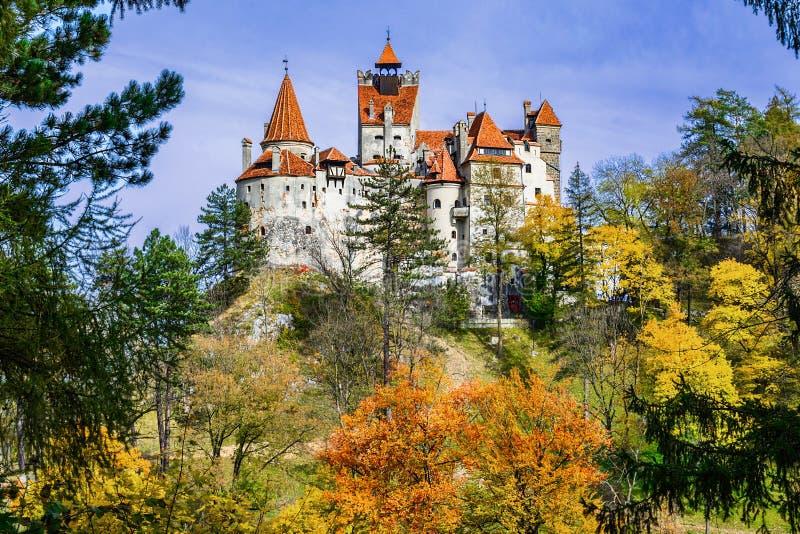麸皮城堡,布拉索夫,特兰西瓦尼亚,罗马尼亚 秋天风景机智 图库摄影