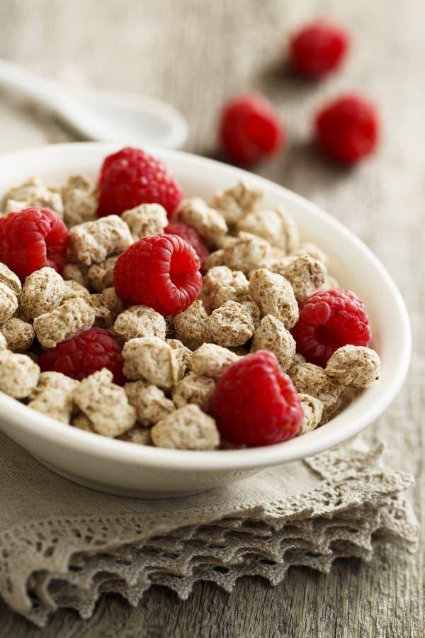 麸皮用莓 免版税图库摄影