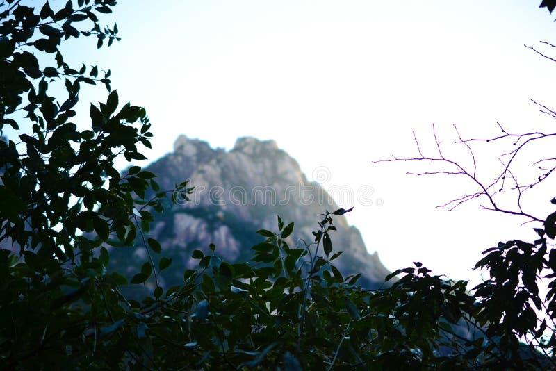 黄山黄色山在安徽,中国,联合国科教文组织世界遗产 免版税库存图片