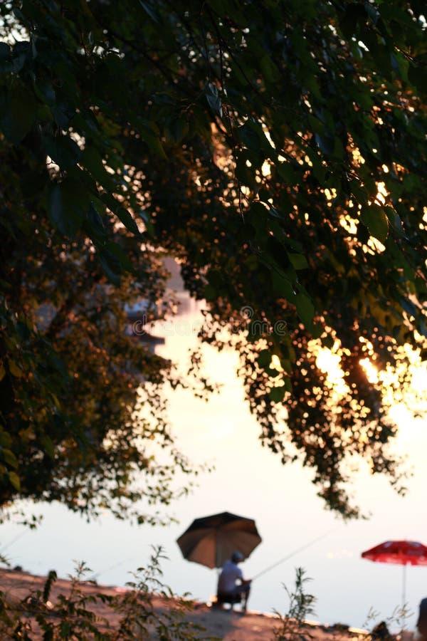 黄昏的渔夫,多瑙河,保加利亚 免版税图库摄影