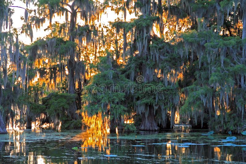 黄昏风景场面在湖马丁路易斯安那 免版税图库摄影