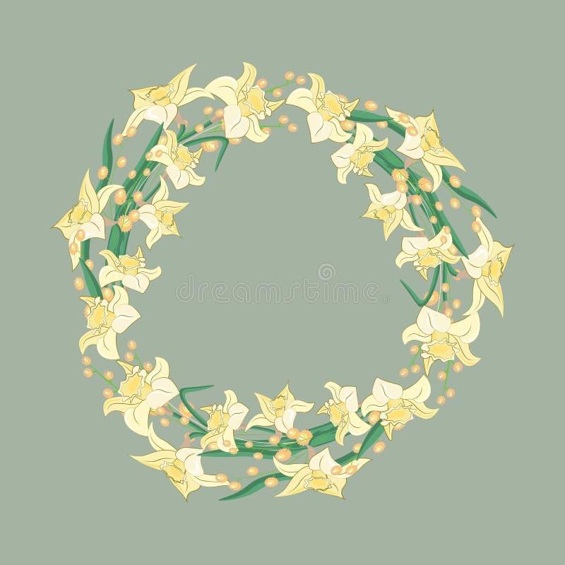 黄水仙花圈 水彩传染媒介例证 花卉设计要素 皇族释放例证
