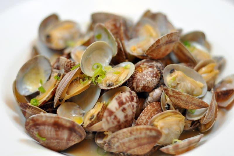 黄油蛤蜊 免版税库存照片