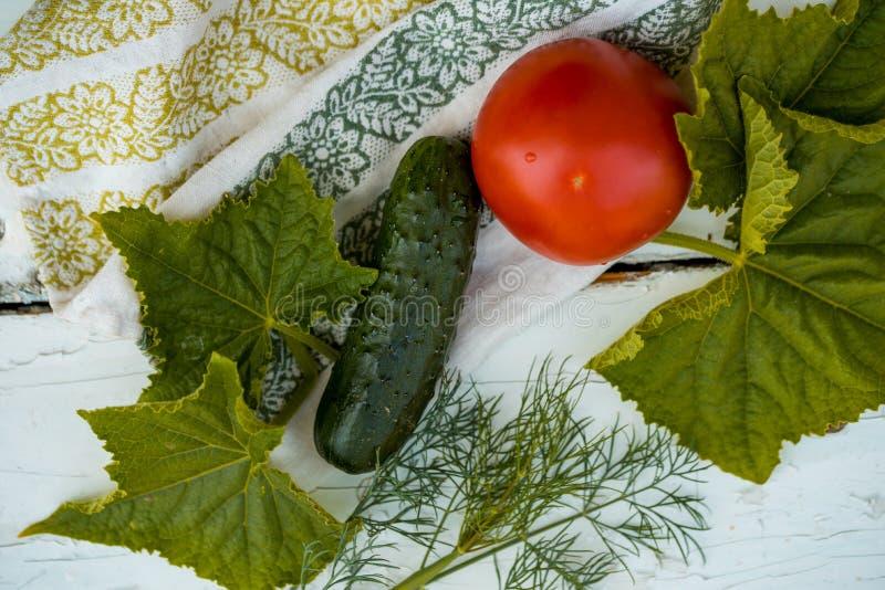 黄瓜和蕃茄和莳萝在一张亚麻布餐巾与刺绣 新鲜的庭院蔬菜 绿叶叶子  免版税库存图片