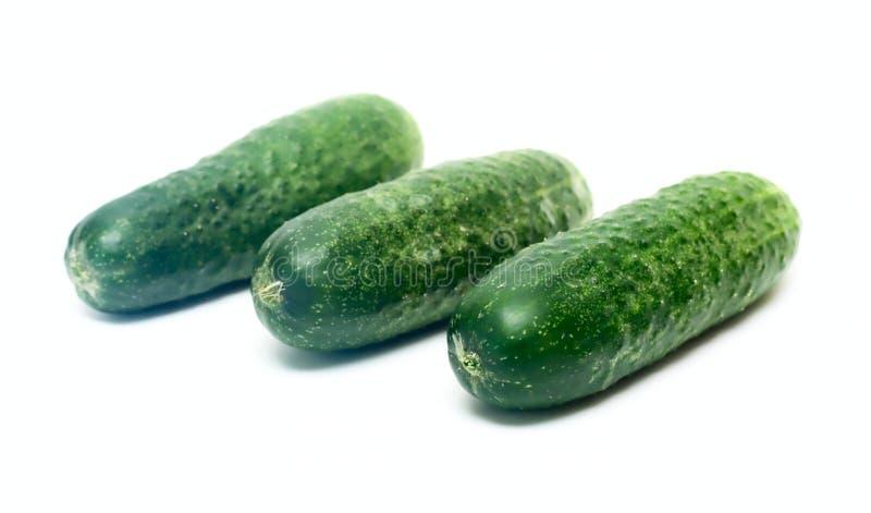 黄瓜查出空白的蔬菜 库存照片
