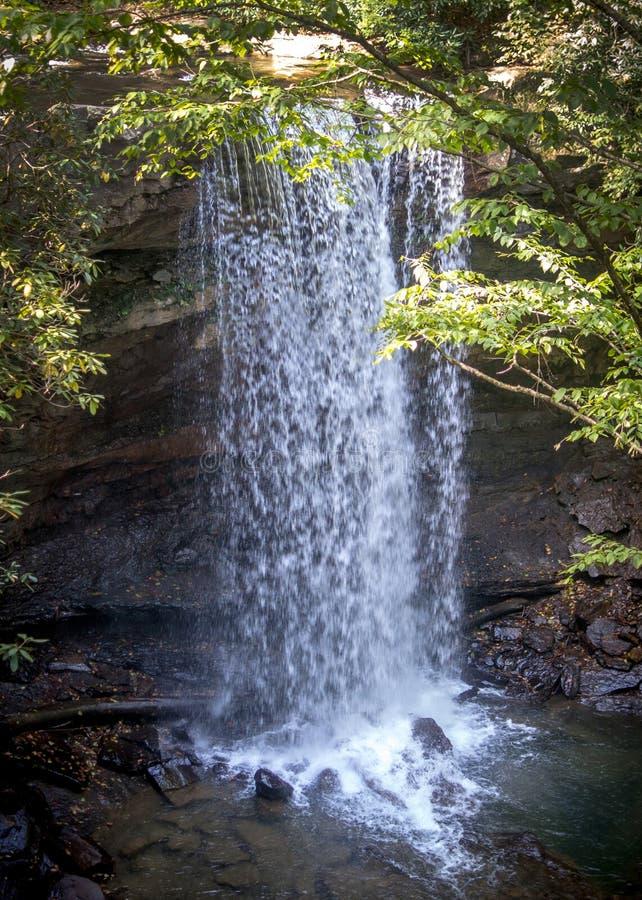 黄瓜秋天在宾夕法尼亚美国 库存图片