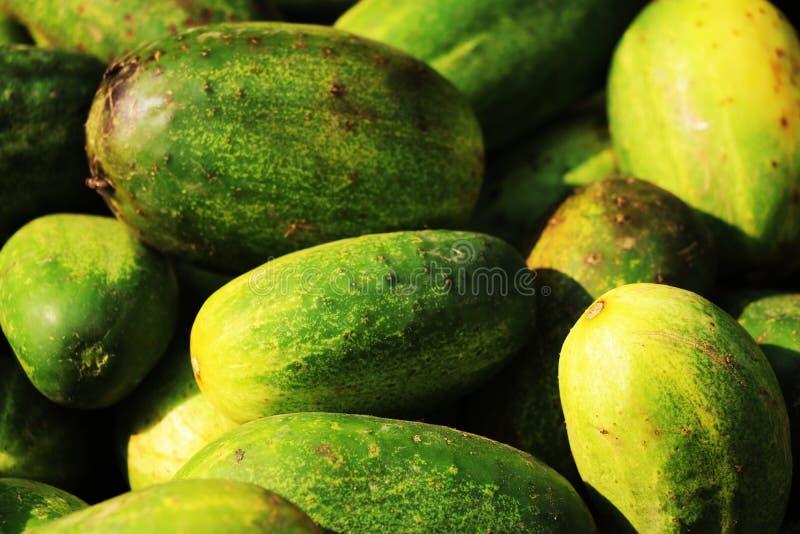 黄瓜菜使用了作为沙拉菜 库存照片