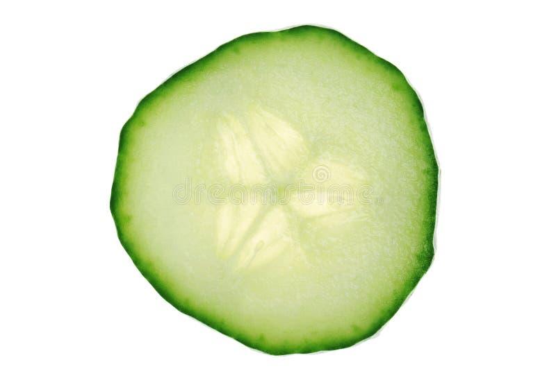 黄瓜 免版税图库摄影