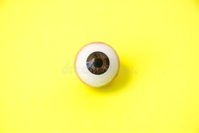 黄疸或黄疸-肝脏病的症状显示在眼睛概念照片的 肉眼的解剖模型打开 免版税库存图片