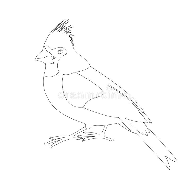 黄色主要鸟传染媒介例证彩图 向量例证