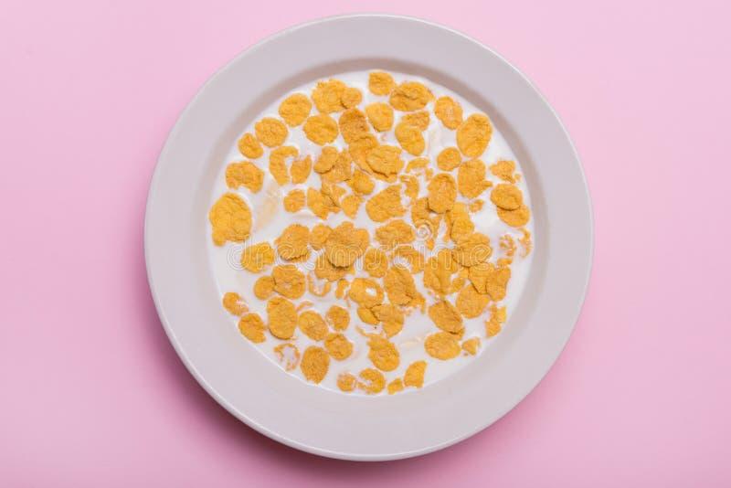 黄色剥落 与剥落和牛奶的向日葵 甜早餐在一块白色板材剥落 桃红色背景 免版税图库摄影