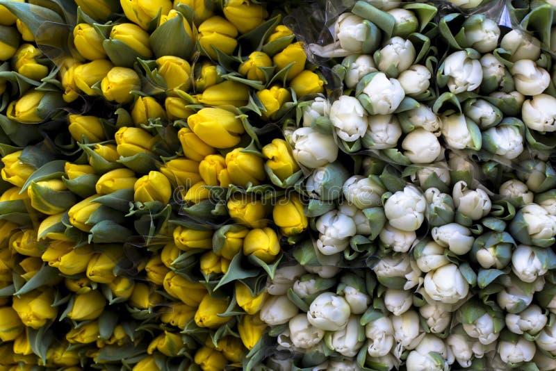 黄色和白色郁金香纹理在新鲜的春天花束的在市场上 免版税图库摄影