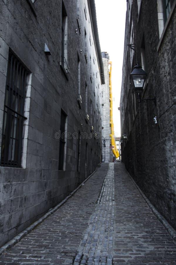 黄色垃圾滑道在老镇蒙特利尔魁北克加拿大 免版税库存照片
